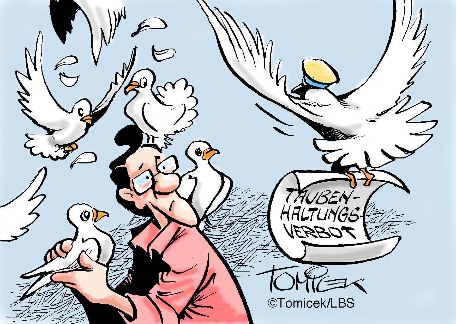 60 Tauben sind zu viel